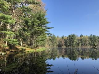 Picture of Cutter Merriam Conservation Area pond